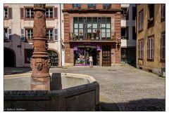 Belfort - Librairie