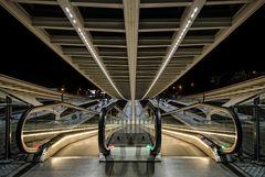 Belgien - Gare de Liège-Guillemins 4