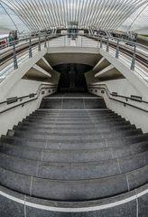Belgien - Gare de Liège-Guillemins 8