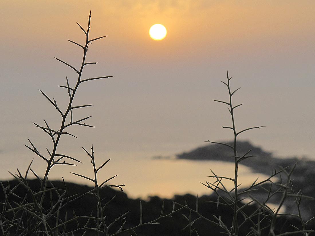 Bella Sardegna - Insel der spektakulären Sonnenuntergänge / Isola dei tramonti spettacolari (2)