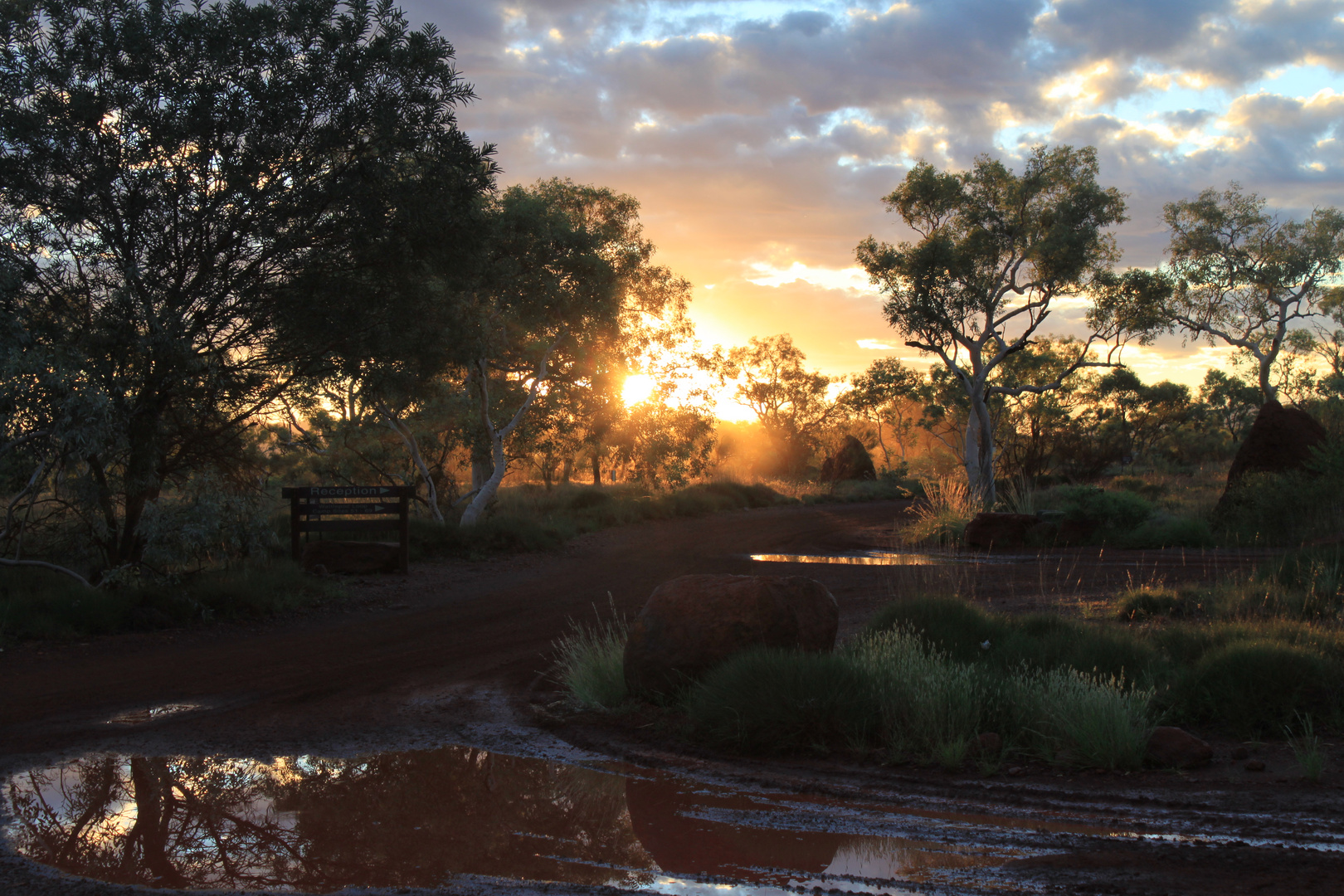 beloved australia