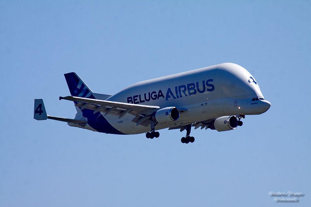"""""""Beluga"""" von Airbus"""