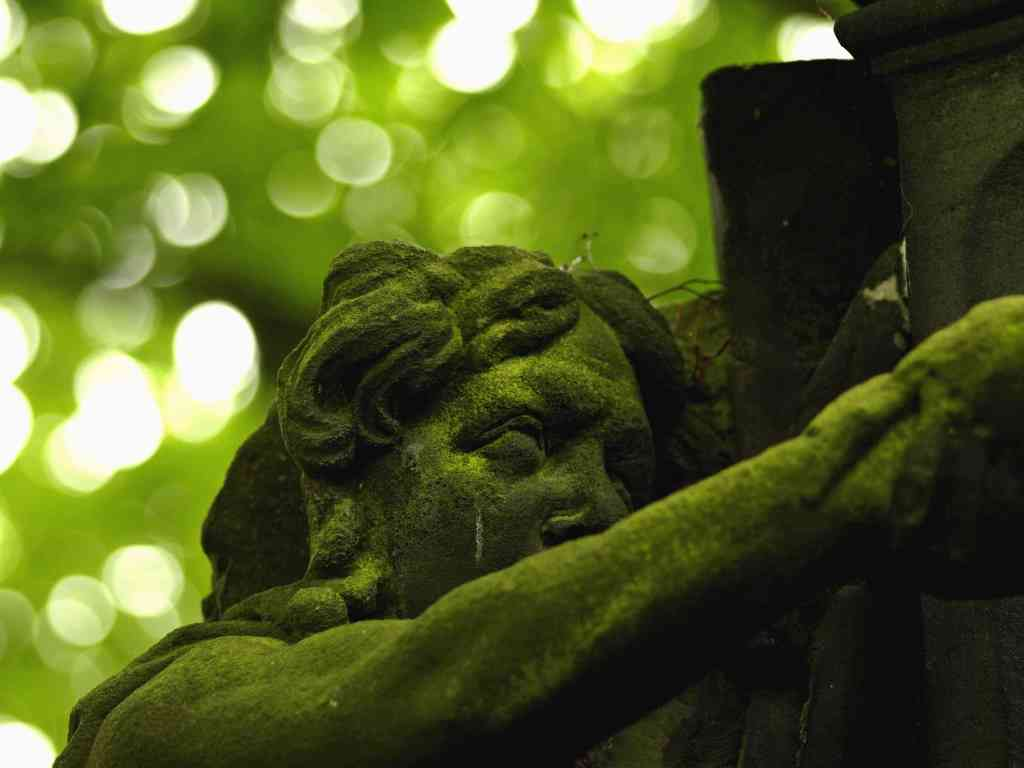 Bemooster Kopf einer Grabfigur