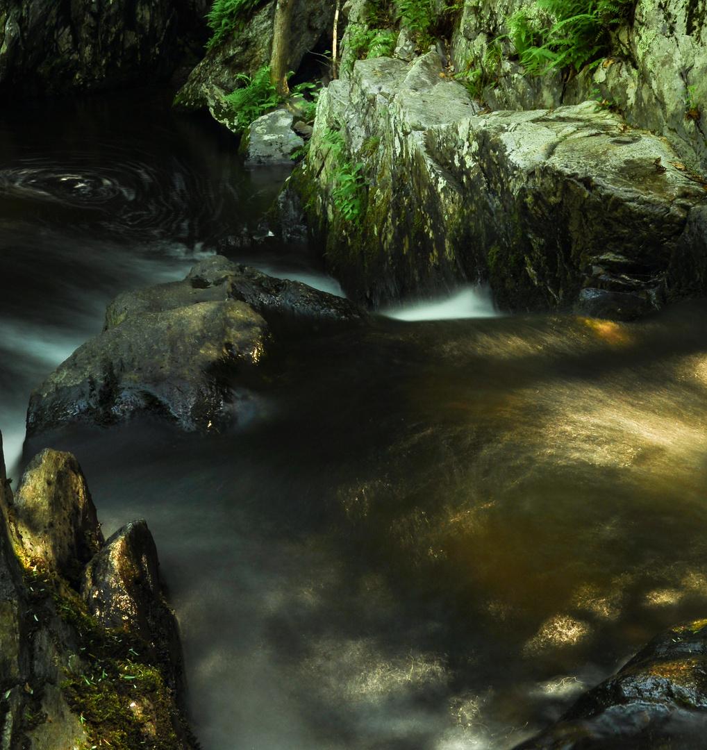 Beneath Nature