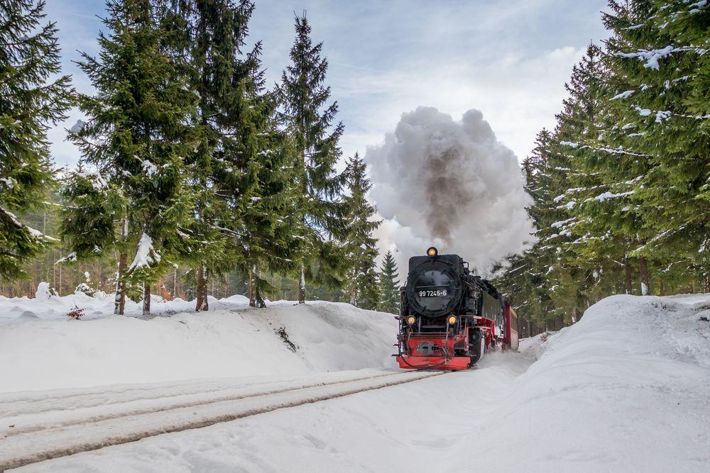 Benneckensteiner Winter