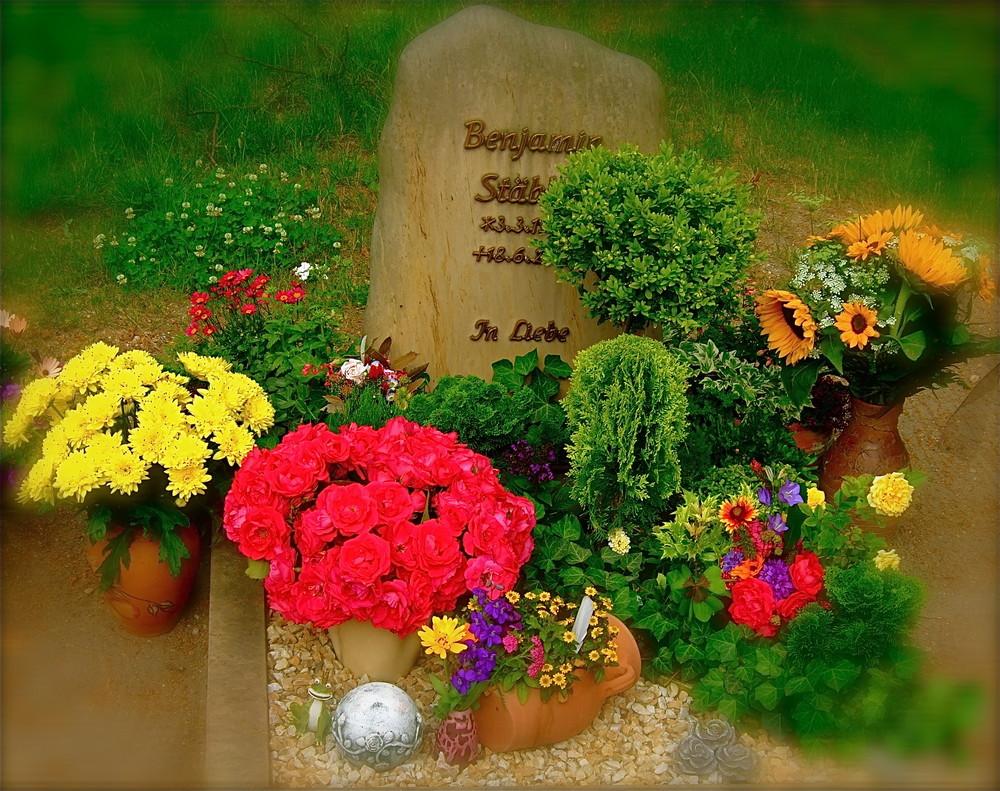 Benno's vierter Todestag.