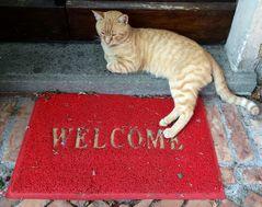 Benvenuto...