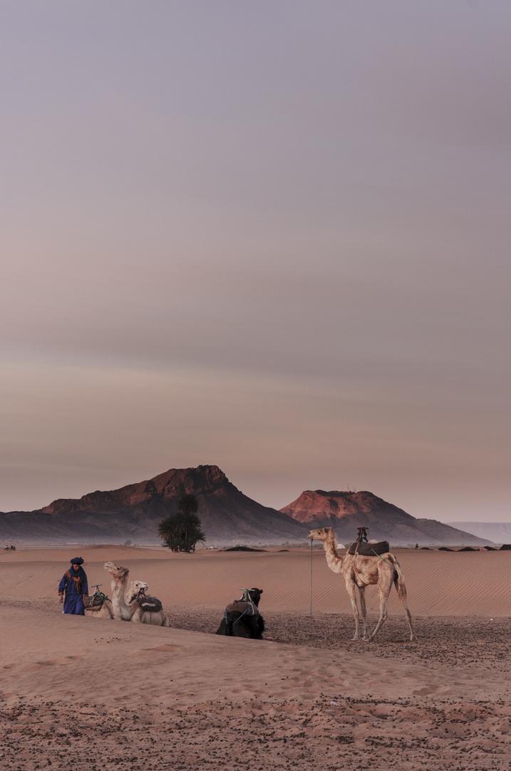 Berber Morning