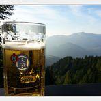 Berchtesgadener Weitblick