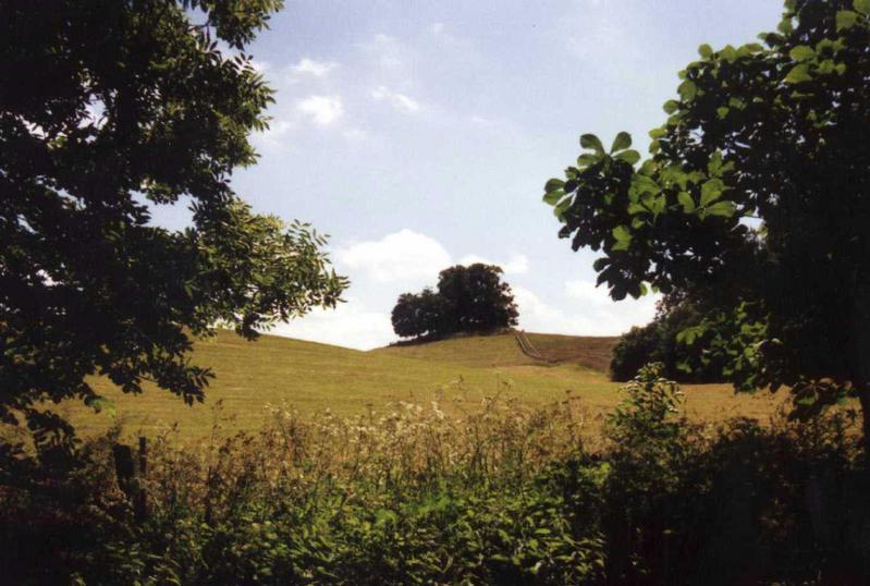 Berg bei Wustrow