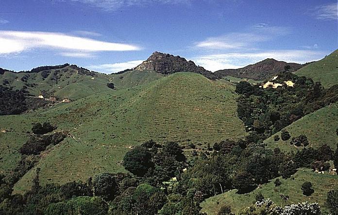 Berge auf der Coromandel-Halbinsel