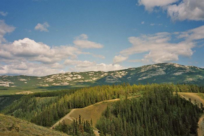 Berge hinter Whitehorse(yukon)
