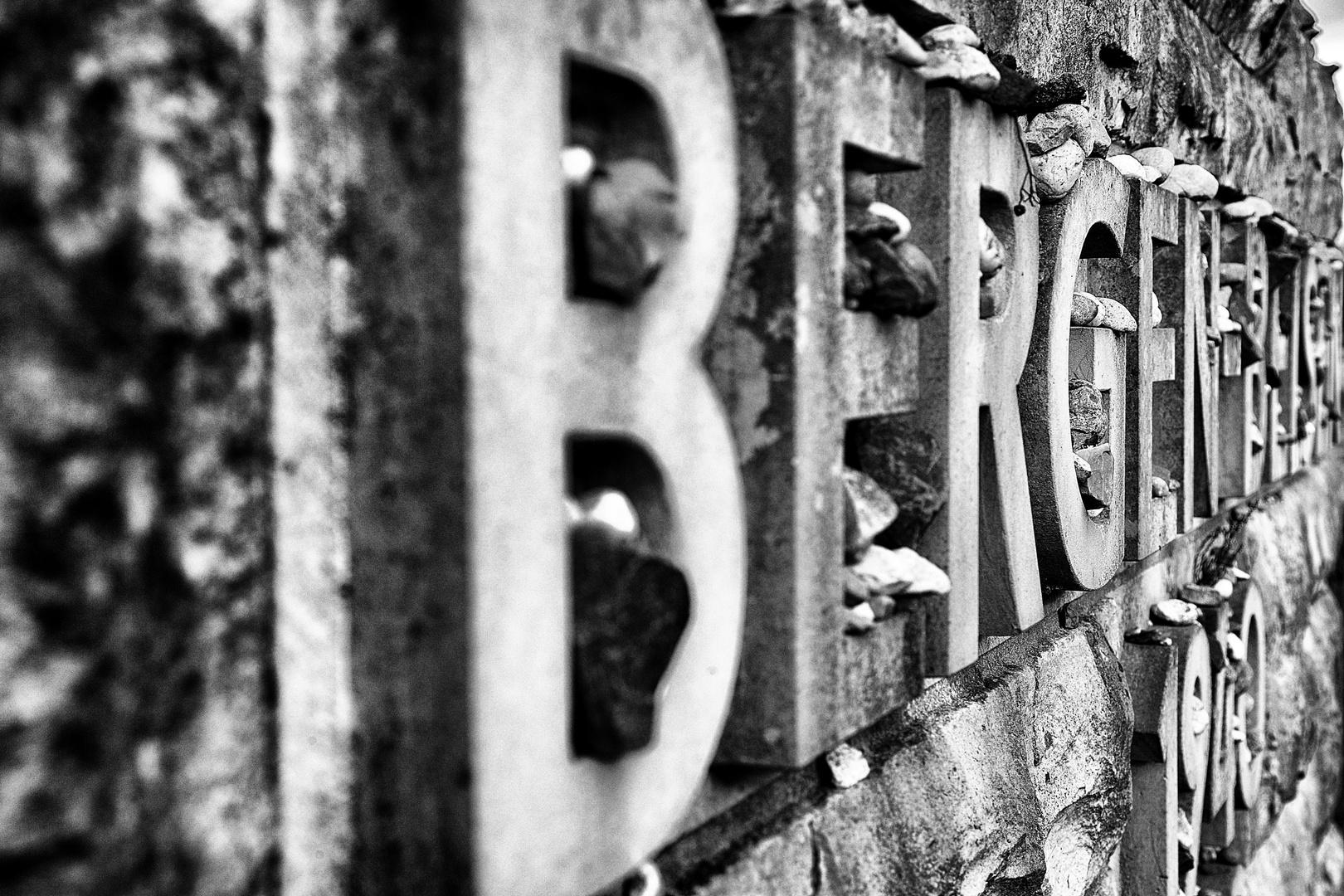 Bergen Belsen / 2014 - 3