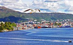 Bergen, Hafen