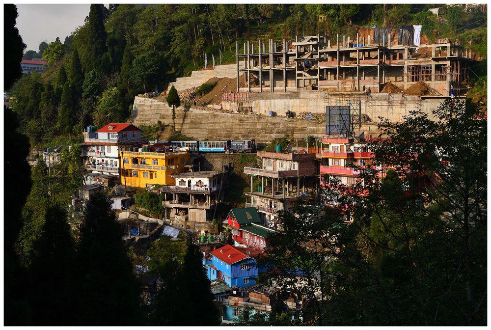 Bergfahrt entlang der Hänge Darjeelings II