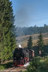 .... Bergfahrt .... Sophienhof, 99 7237, September 2013
