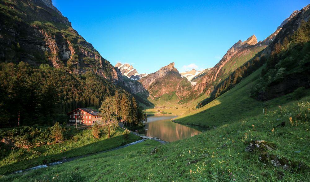 Bergfrühling (4)