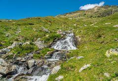 Bergfrühling am Bernina