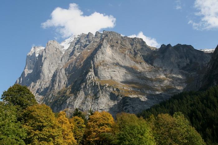 Berglandschaft mit herbstlichem Vordergrund (Berner Oberland / Schweiz)
