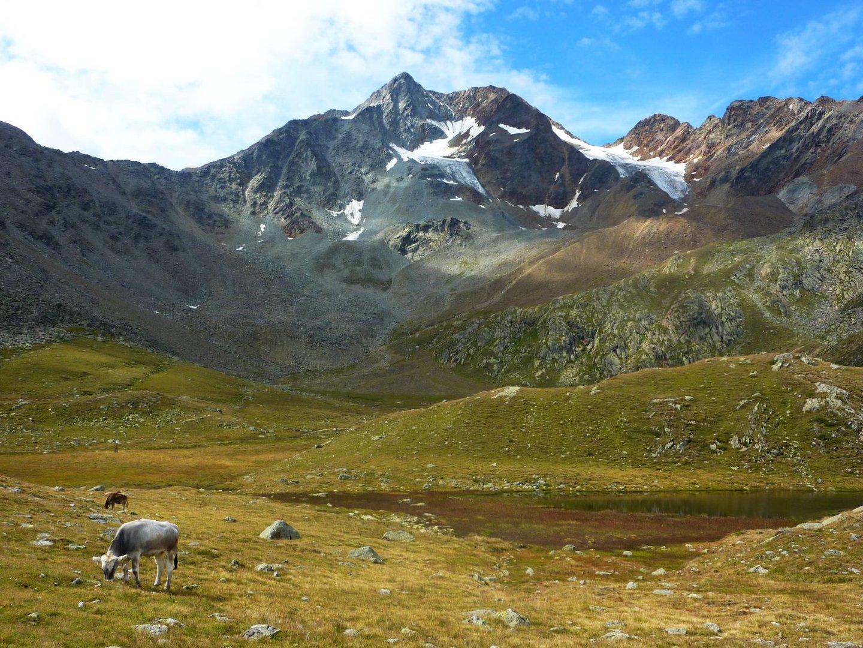 Berglandschaft Südtirol 2