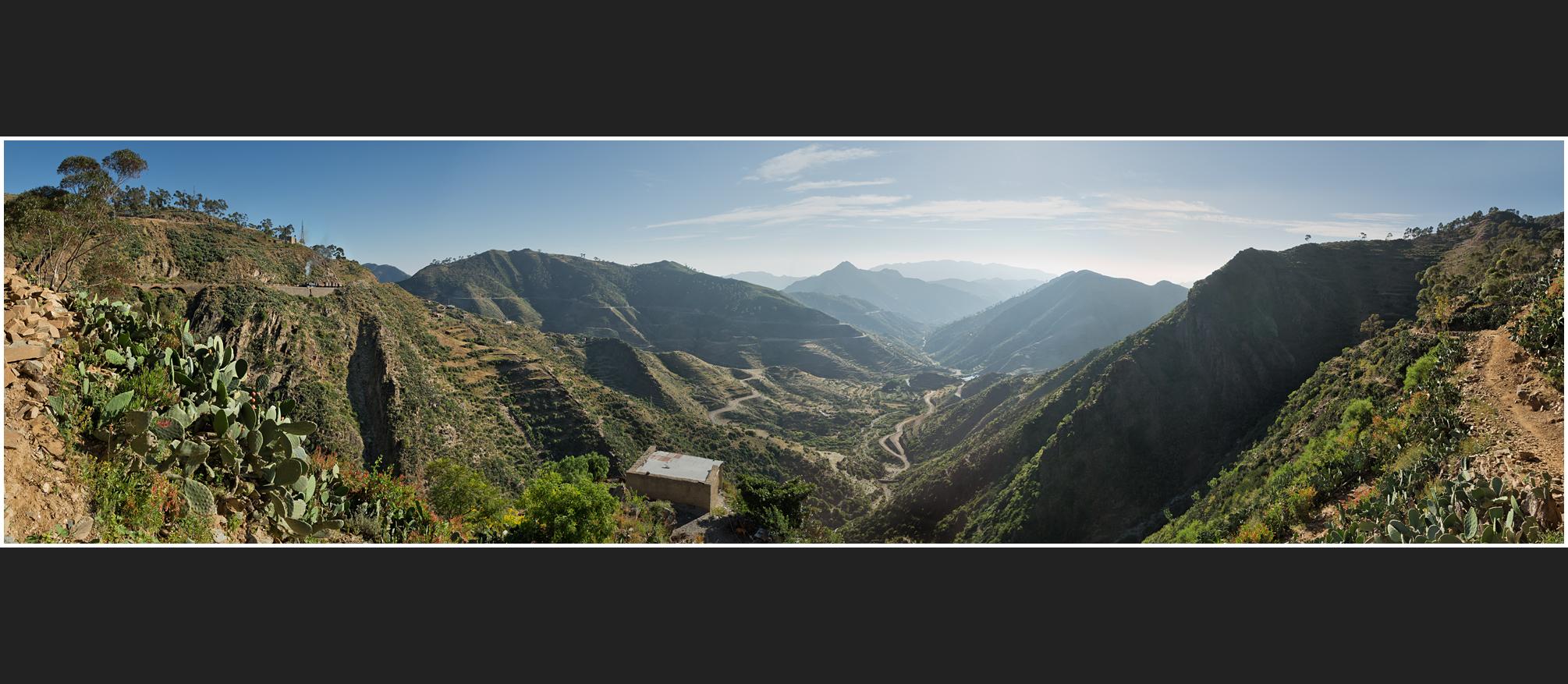 Bergmallets in Eritrea CXXVII