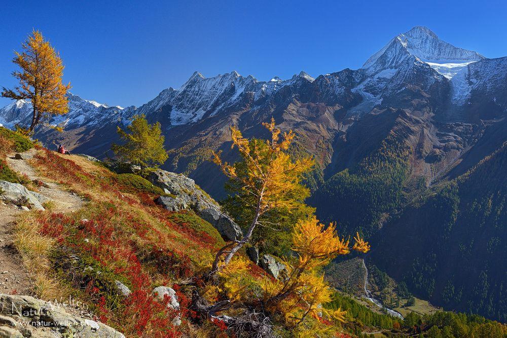 Bergparadies