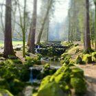 Bergpark Kassel   (Fototechnik Miniaturansicht)
