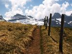 Bergtour zum Chaiserstuel - Zaun auf 2300m