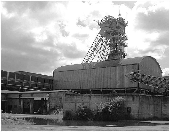 Bergwerk Westfalen, Ahlen III