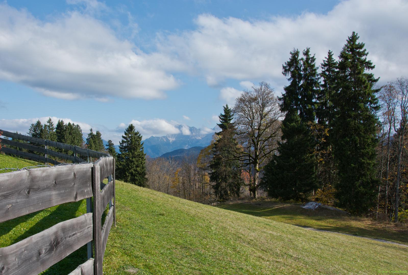 Bergwiesen mit Aussicht