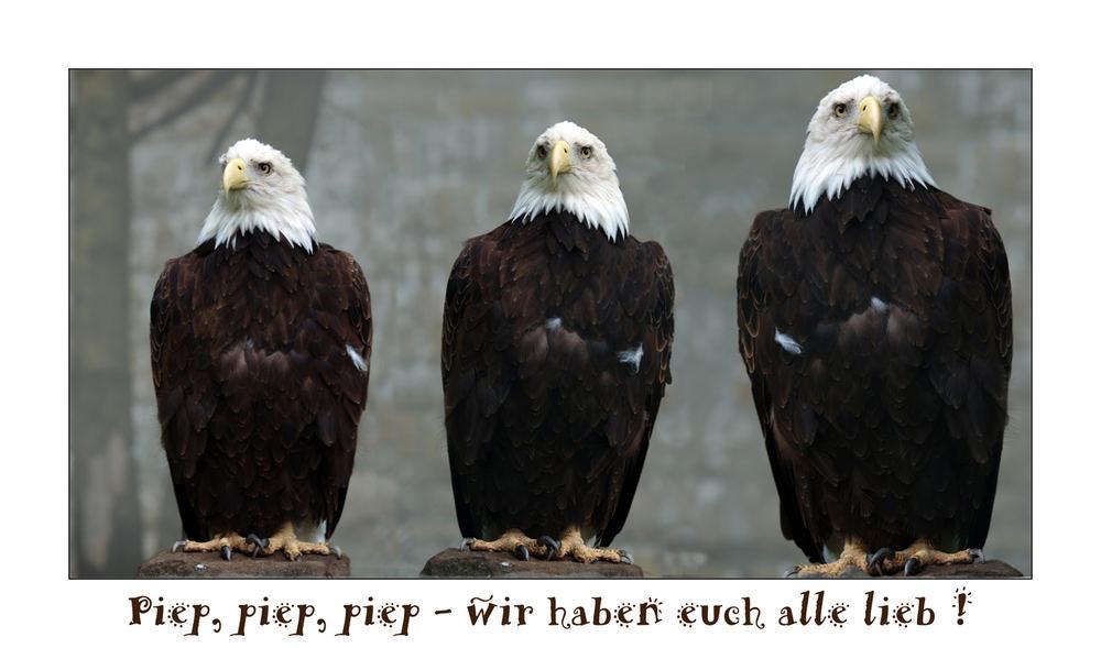 """Berlin """"anders"""": Tierpark Friedrichsfelde"""