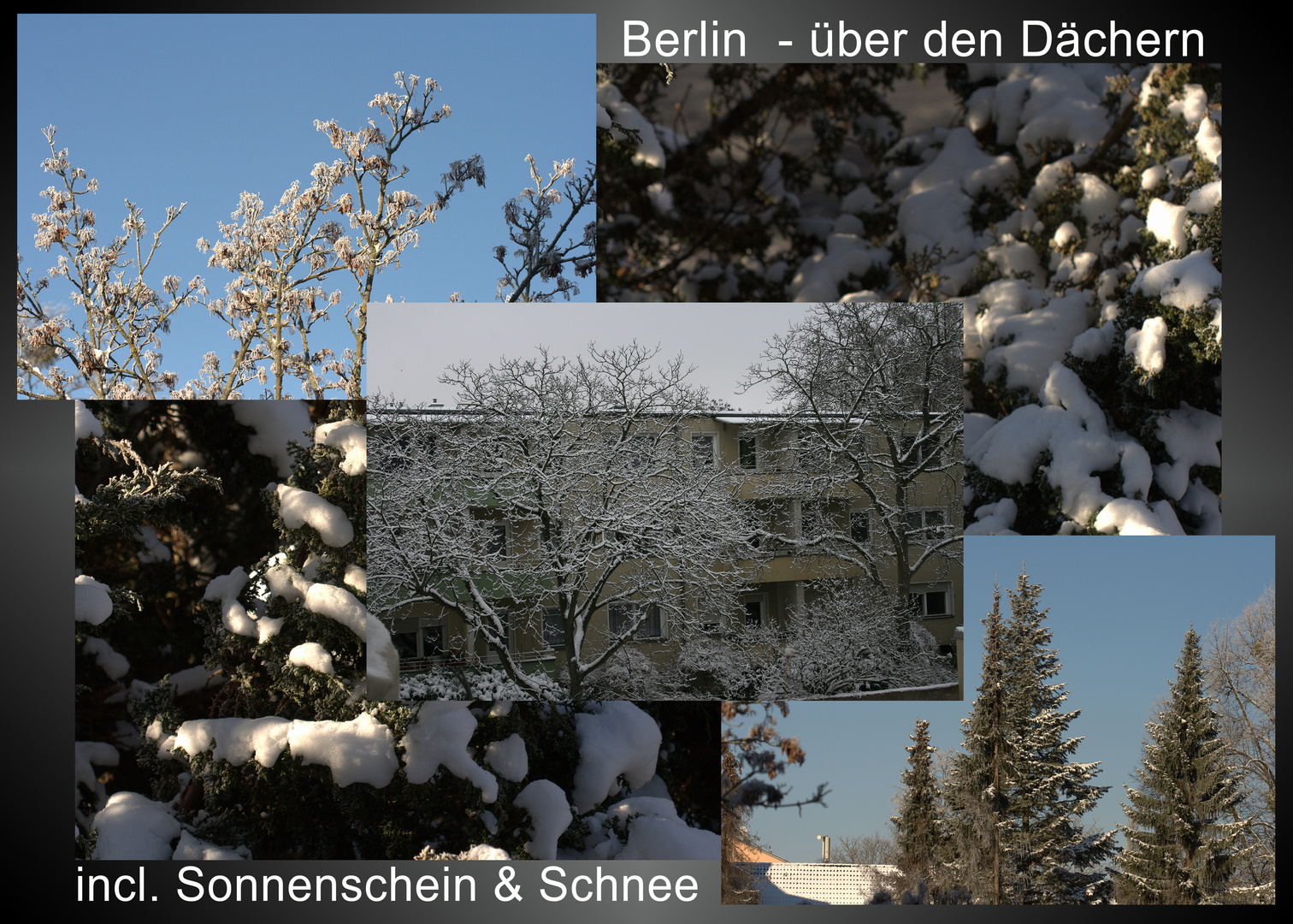 Berlin-Dächer-SundS