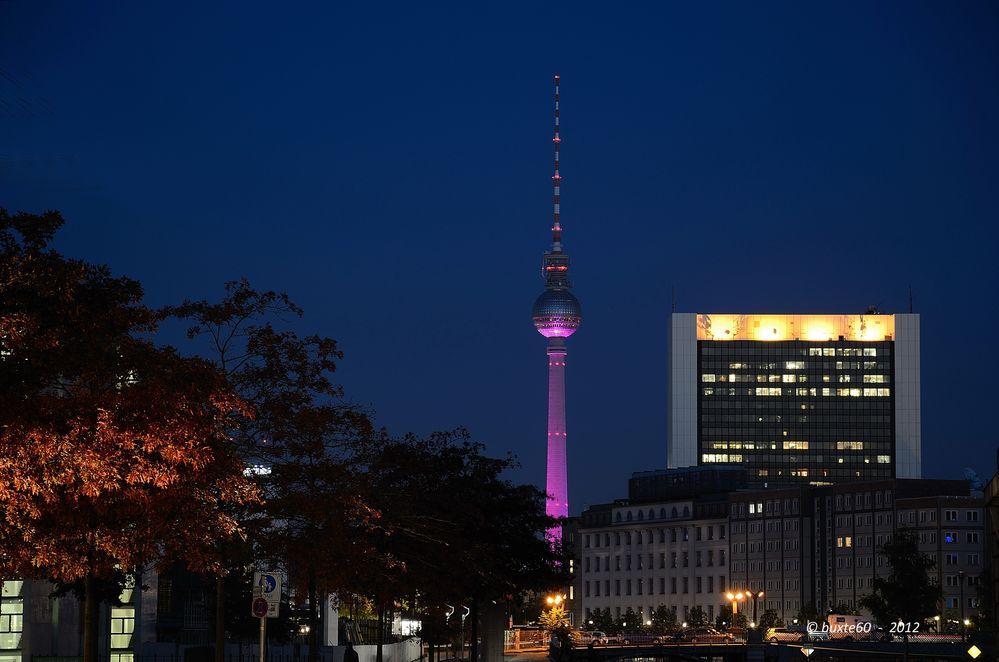 Berlin Festival of Lights 2012 - Fernsehturm in pink