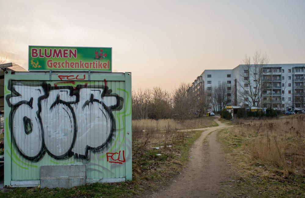 Berlin, Marzahn-Hellersdorf, März 2014: Blumen, Geschenkartikel