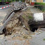 Orkan in Berlin