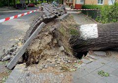 Berlin nach dem Sturm (Reload)