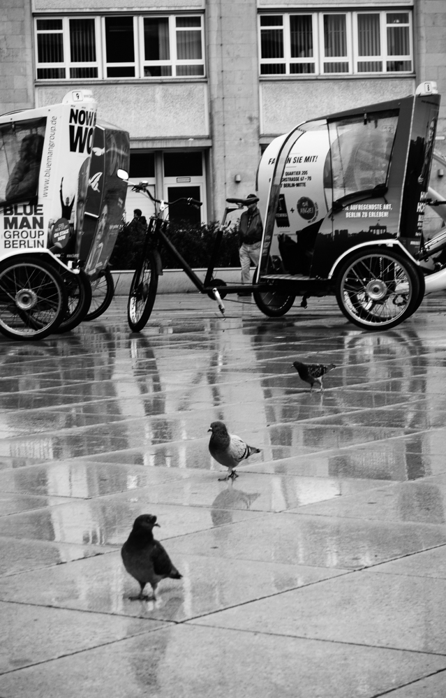 Berlin, September 2014: Mittlerweile kenne ich die Tauben vor dem Fernsehturm mit Namen.