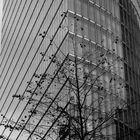 Berlin - Sony-Center (3)