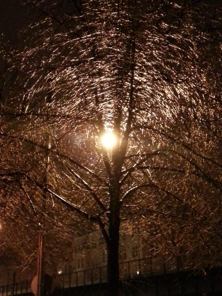 Berlin Winter Impressions