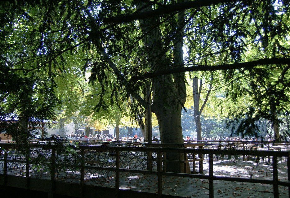 Berliner Tiergarten, 11.10.08 – 07