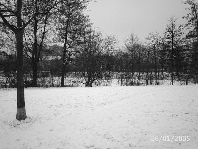 Berliner Winterlandschaft