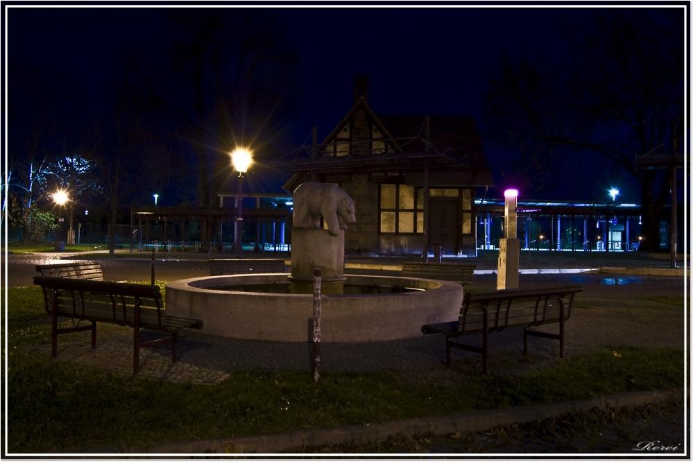 Bernburg bei Nacht (6)