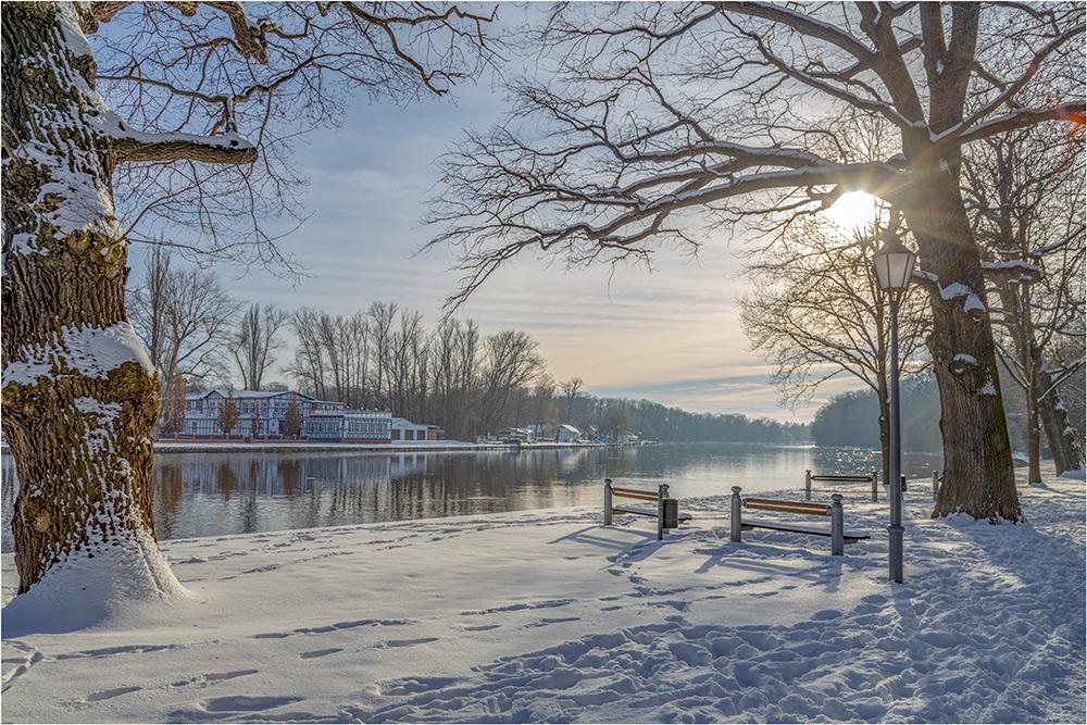 Bernburger-Winter an der Saale