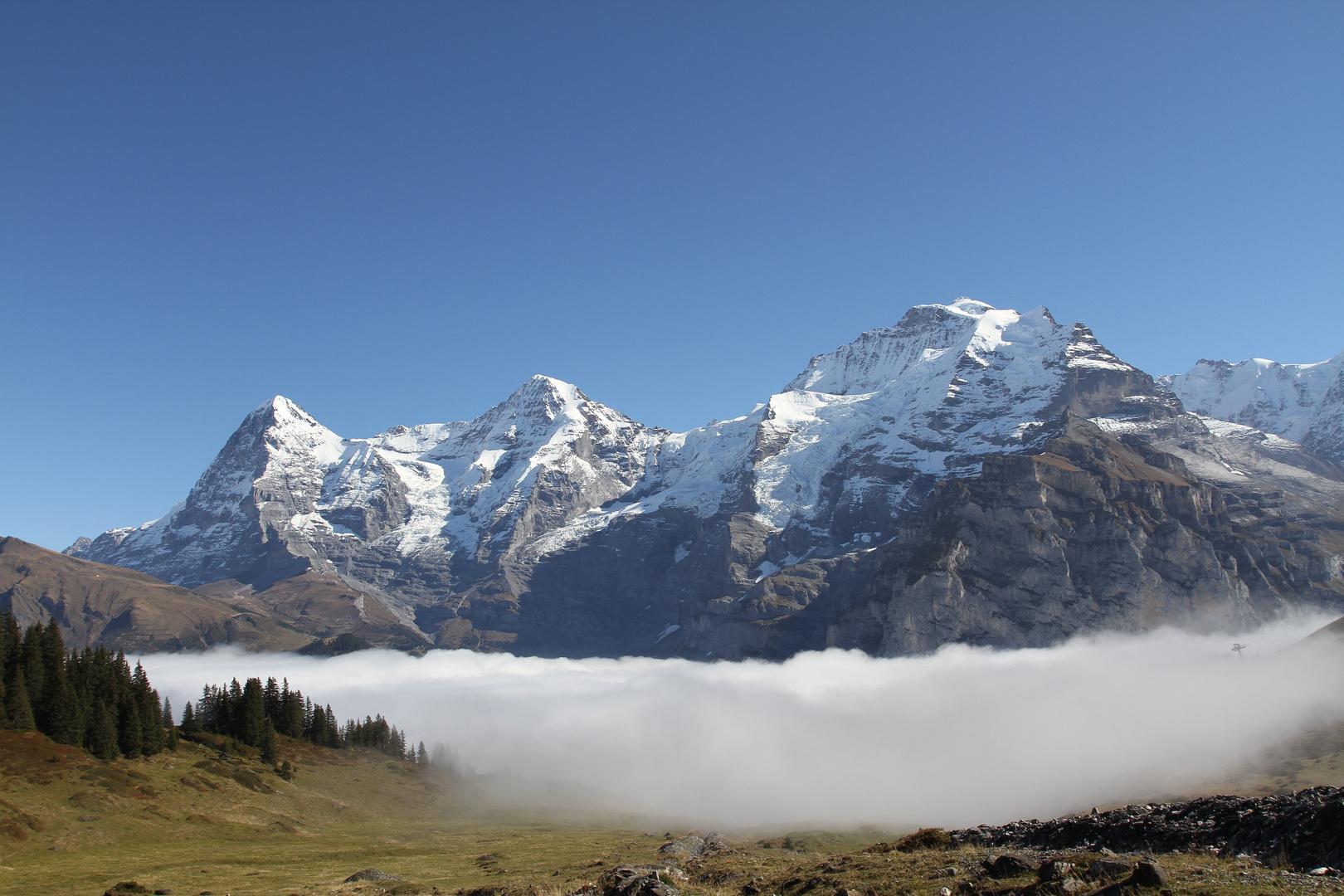 Berner Alpen 1