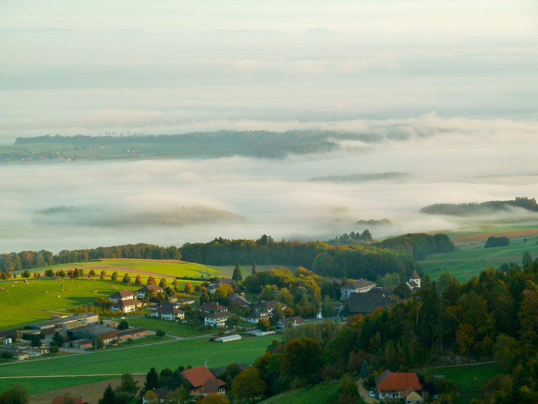 Berner Seeland im Nebel