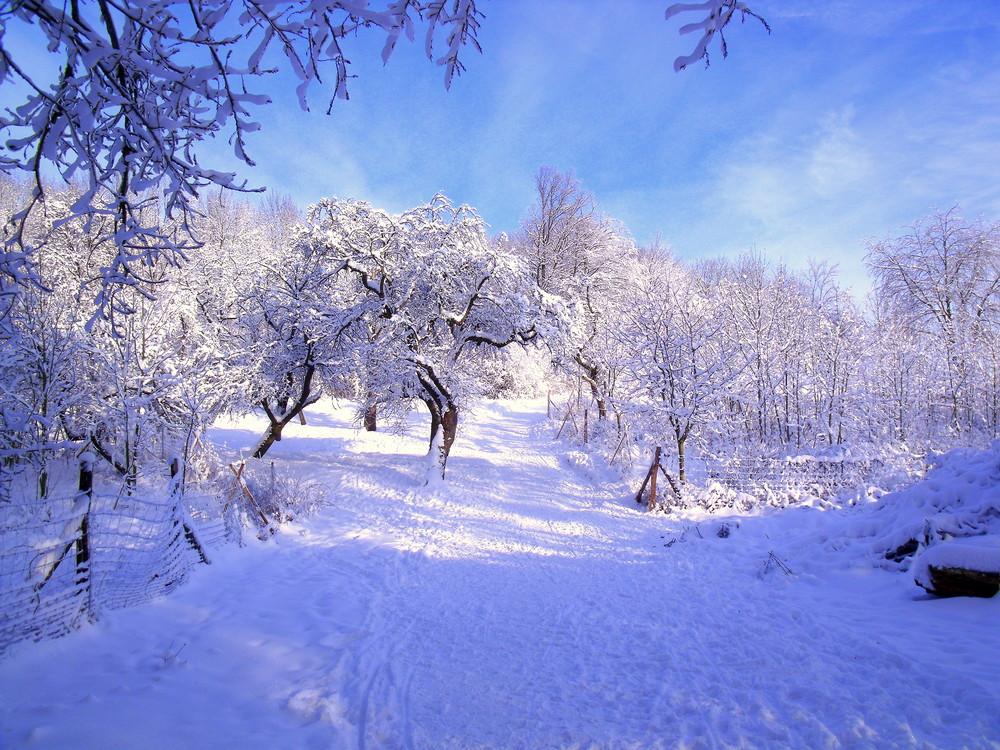 Bero - ein Wintertraum