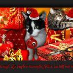 Besch(w)erlich... Ramses und Leo im Weihnachtsstress .. mehr oder weniger ;o)