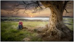 Besinnlich unter dem Baum