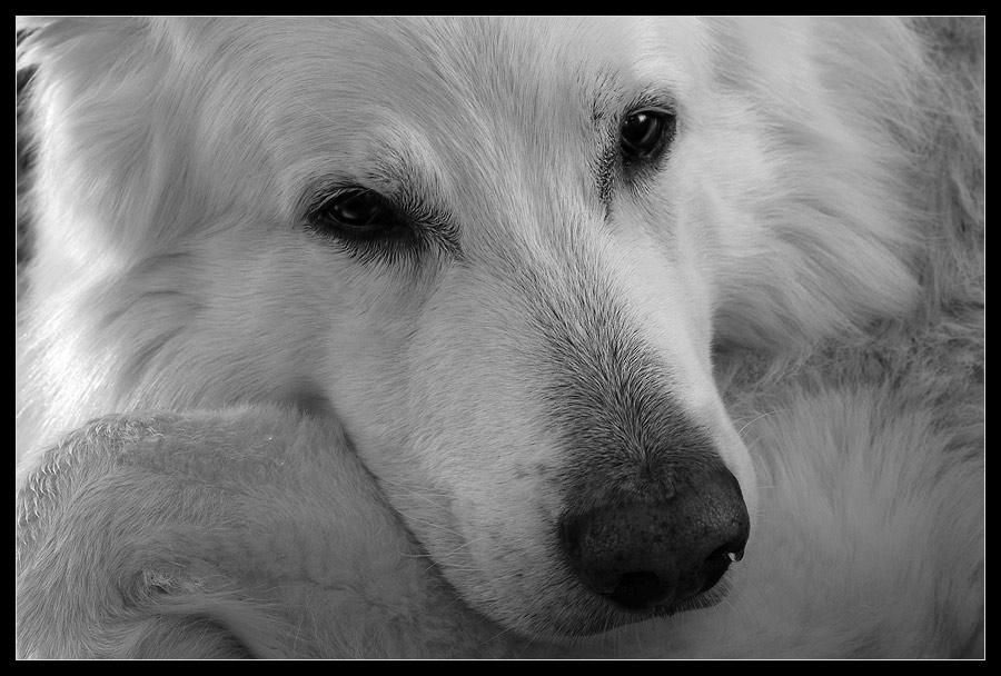 best friend - miss you
