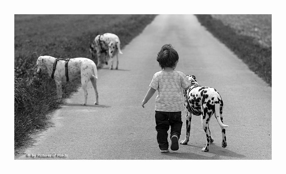 Beste Freunde...